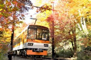 京阪電車.京都.四季.京阪線