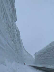 立山黑部.雪之大谷.雪壁.阿爾卑斯山脈.雪壁散策