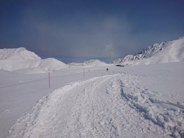 立山黑部.雪之大谷.雪壁.阿爾卑斯山脈.雪壁散策.夏雪